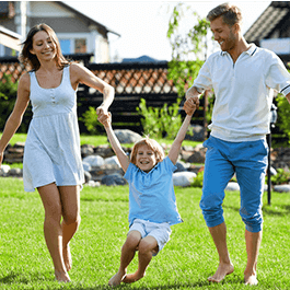 <p>Get everything your lawn needs to look it's best without the use of chemical fertilizers and pesticides!</p>