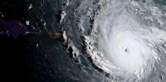 Irma and Harvey