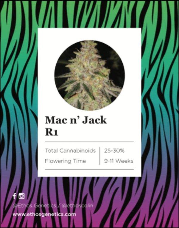 Ethos - Mac n' Jack R1