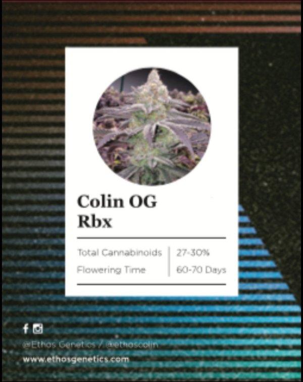 Ethos - Colin OG Rbx