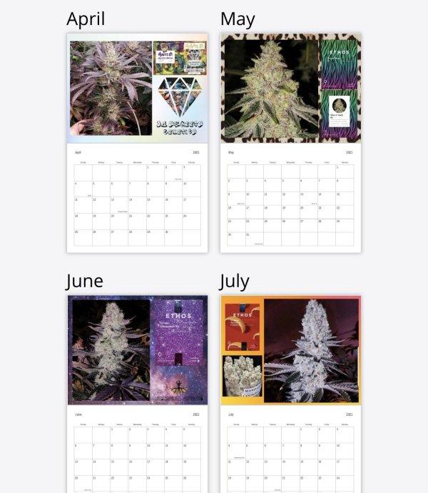 """Brotanical Gardens - 2021 Calendar (8.5""""x11"""")"""