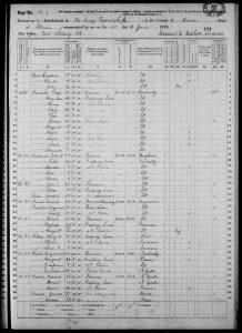United States Census, 1870 - Illinois Brown Pea Ridge image 5 of 26