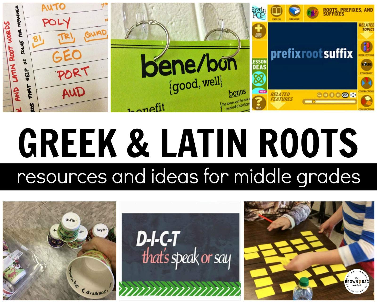 Greek And Latin Roots