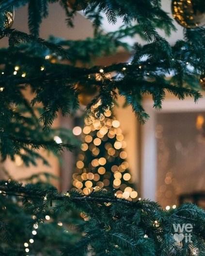 blogmas christmas