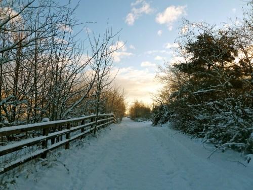 Priorslee, Telford, Shropshire. 9:17am, Friday, 24th December 2010.
