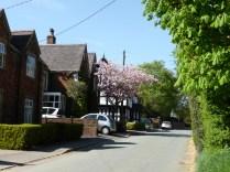 Harlaston village
