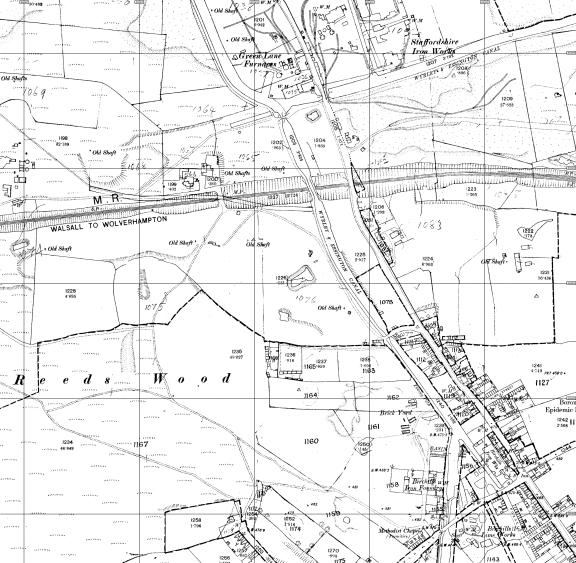 1887 Reedswood
