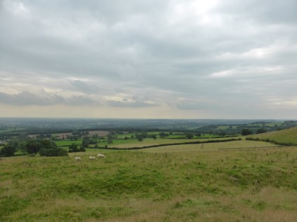 The Weaver Hills: I can see Cannock Chase from here