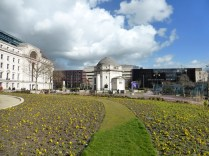 Beautiful flowers in Centenary Square