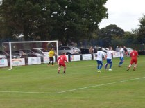 Wood on the attack... Image kindly supplied by David Evans.