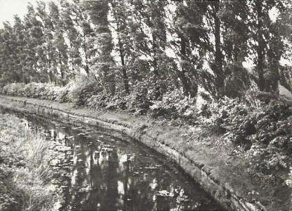 Watery Lane, Darnford Whitsun 1958.