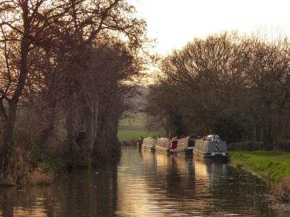 Canal near Tamworth
