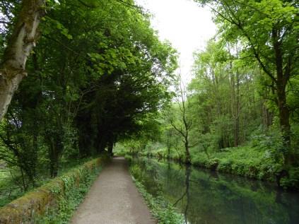 Cromford Canal, the world's longest duckpond