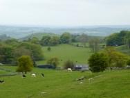 Looking over Hoe Grange