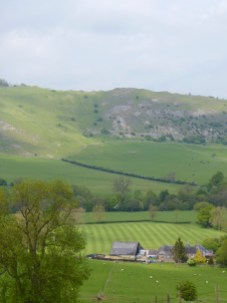 How green was your Manifold Valley?