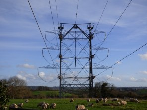 The first pylons back on the banks behind the big ones are curious, too. Again, platforms on top.