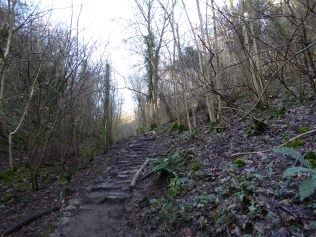 Climbing the path from the Avon river trail to the bridge was hard work!