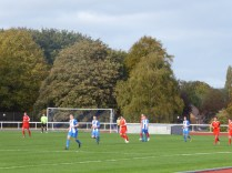 A lovely warm autumn afternoon and a captivating display of meaningful soccer . Love the Wood!