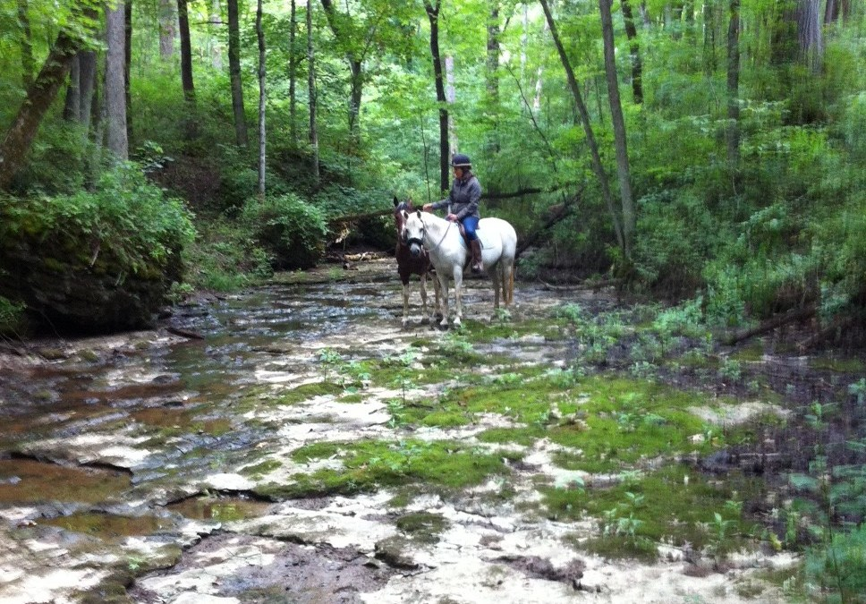 Why Trails? Benefits of Trail-Riding