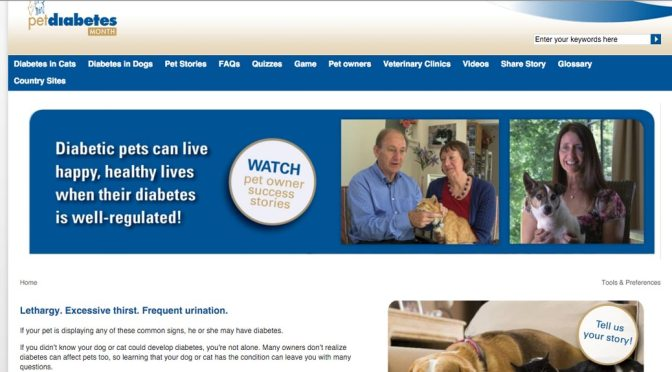Screen shot of Pet Diabetes Month website home page