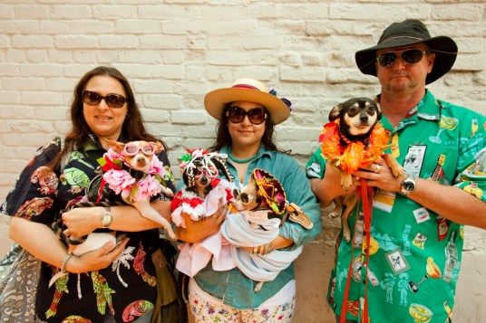 Blessing of the Animals, Olvera Street, Los Angeles, Calfornia, USA