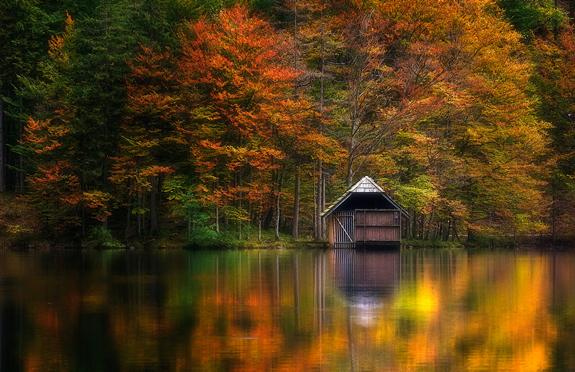 Herbstlight - Nature Photo