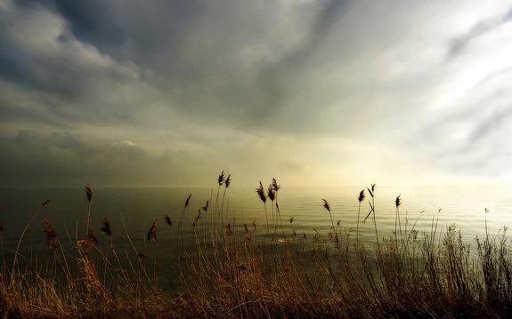 The Lake - Nature Photography