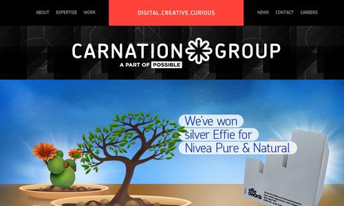 Website Development Company-01