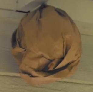 茶色い紙袋のダミーの巣