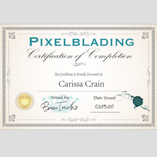 Pixelblading Course Certificate