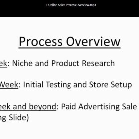Download Frank Keeney – Predictable Ecommerce Growth Coaching Program