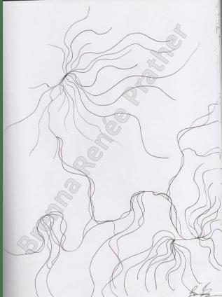 Untitled - Ballpoint Pen 2013-2014