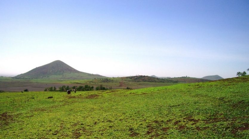 5 Acres For Sale In Kisongo-Arusha Tanzania