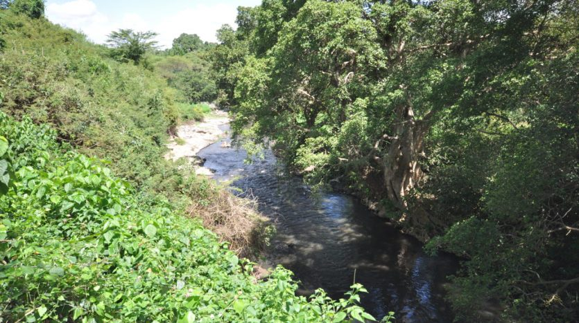 House For Sale In Usariver with 25 Acres4