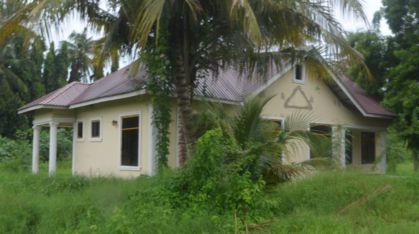 House For Rent at Mikocheni Dar Es Salaam