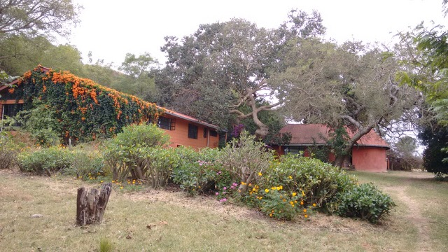 Working farm for sale near Lolkisale Arusha Tanzania
