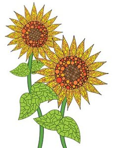 sunflower-difference