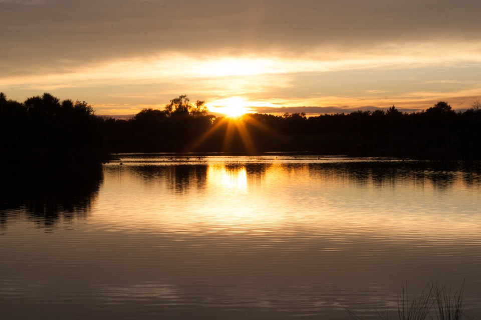 golden sun rising in the morning reflected in a picturesque lake