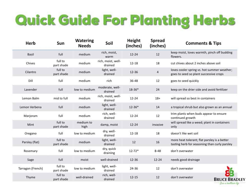 Simple Tips From Planting Harvesting And Storing Herbs