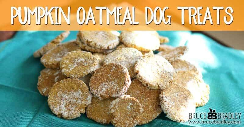 Recipe Pumpkin Oatmeal Dog Treats Bruce Bradley