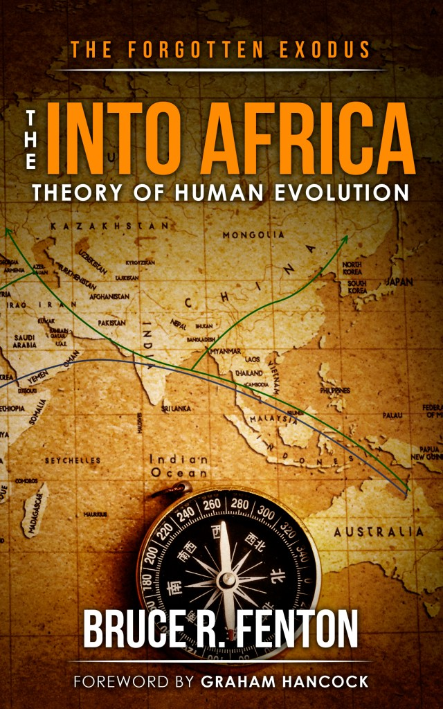 the into africa theory book