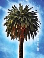 Palm Trees5