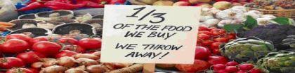 wasted food we buy