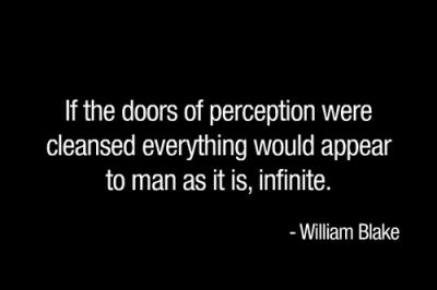 managing perceptions blake