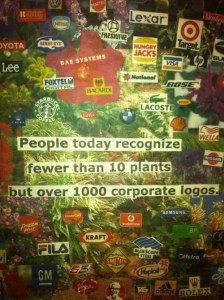brands and plants