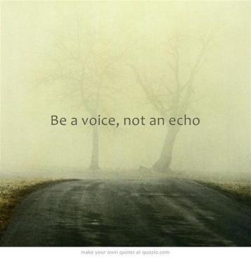 infinte be a voice not an echo