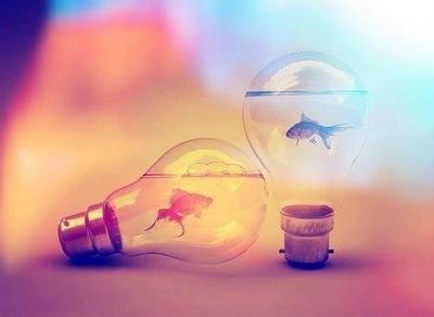 ideas fish