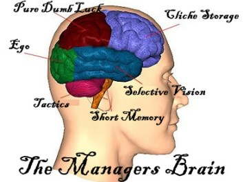 manager brain map