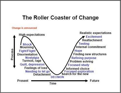 maturity roller coaster of change