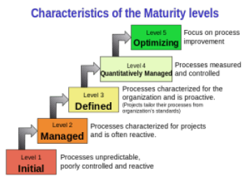 organizational maturity Characteristics_of Model